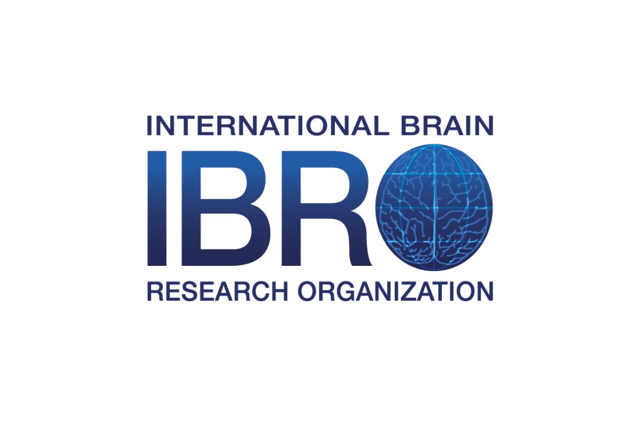 Pan European Regional Committee (PERC) of the International Brain Research Organization (IBRO)
